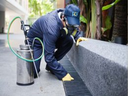 best fumigation Service Islamabad